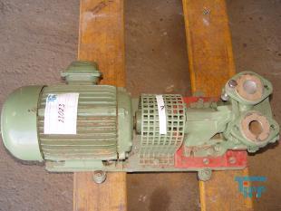show details - Centrifugal sump pump